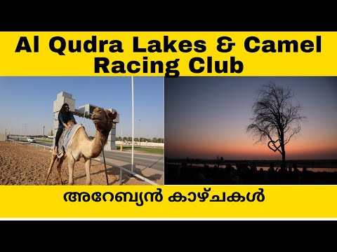 Al Qudra Love Lakes & Dubai Camel Racing Club