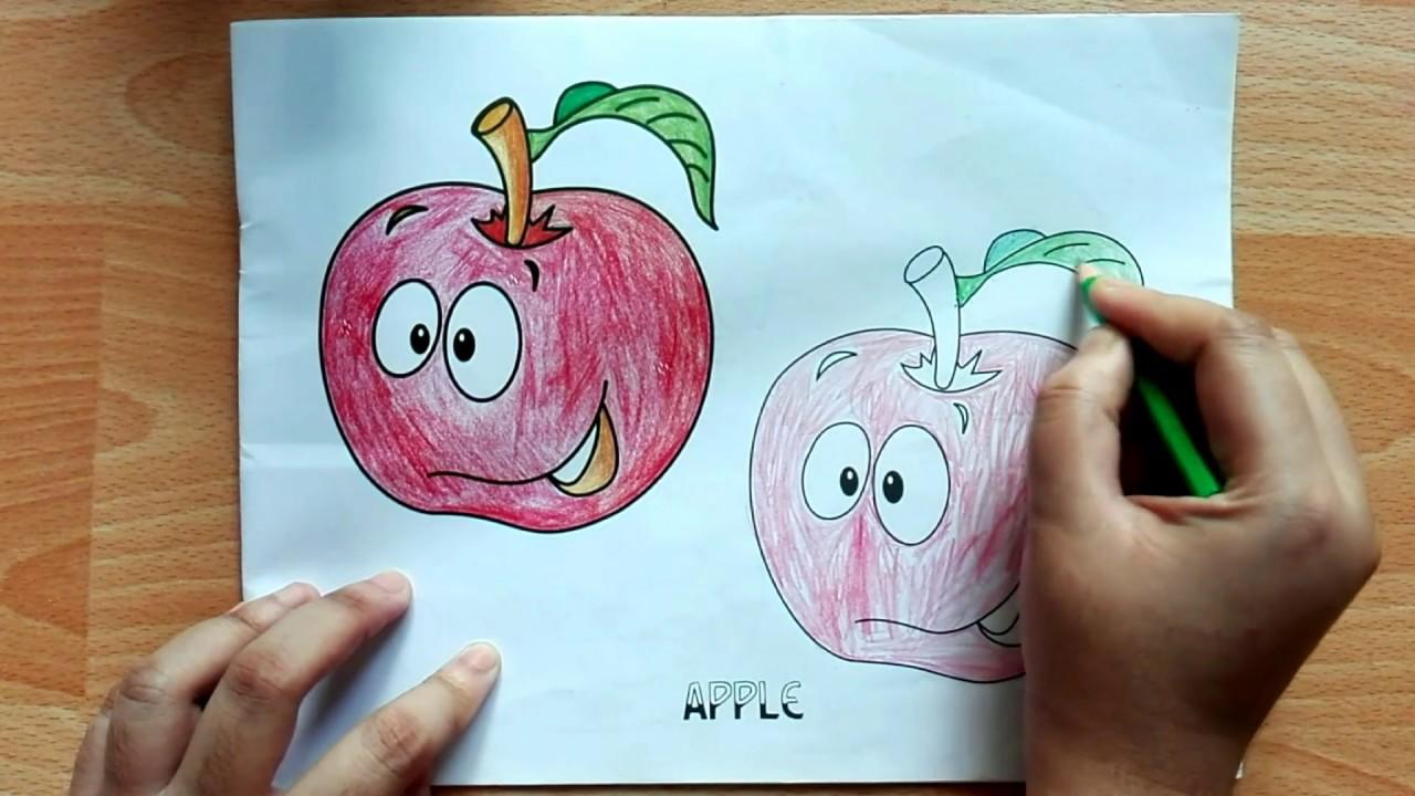Color Apple Fruit