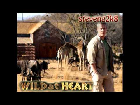 wild at heart official soundtrack (High Quality)