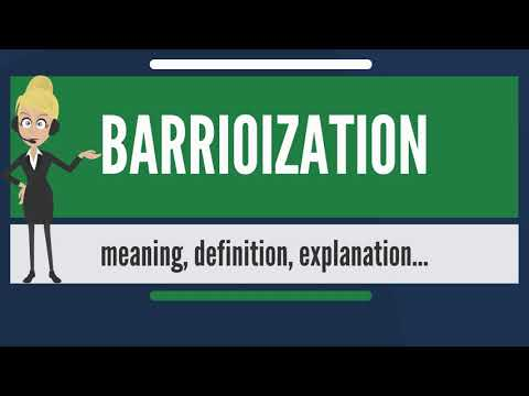 What is BARRIOIZATION? What does BARRIOIZATION mean? BARRIOIZATION meaning & explanation