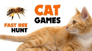 CAT GAMES ★ FAST BEE HUNT on screen