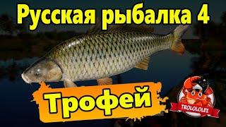 Русская рыбалка 4. Трофей.
