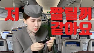 ENG) 아시아나항공 비행한번 했는데 짤릴꺼 같아요 (…