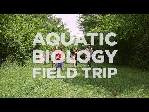 Explore KU Through An Aquatic Biology Field Trip