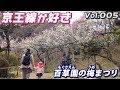 京王線が好き 005 百草園の梅まつり の動画、YouTube動画。