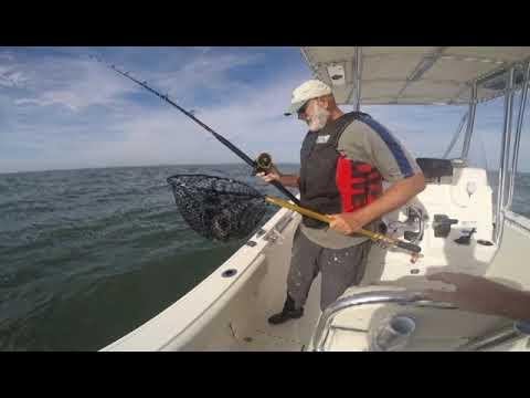 NEW PB STRIPER +Delaware Bay!