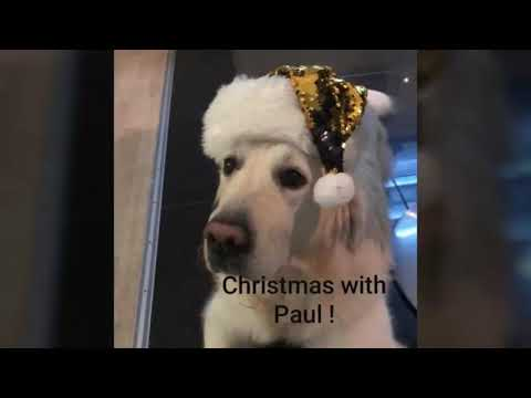 Christmas In Germany   -    Christmas With Paul !       ☆     Weihnachten Mit Paul !
