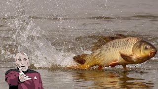 СМОТРЕТЬ ВИДЕО ПРО РЫБАЛКУ, интересные и смешные ролики про рыбалку