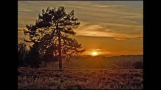 Stille, hjerte, sol går ned - Ove Verner Hansen med Studenter sangforeningen