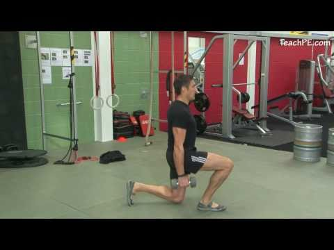 Free weight exercises – Dumbbell Lunges