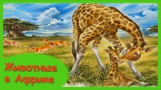 ЖИВОТНЫЕ В АФРИКЕ🐊Мамы и малыши/Учим с детьми названия диких животных
