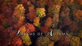 Dreams of Autumn in 4K60 | DJI Phantom 3 | FPV | 2016