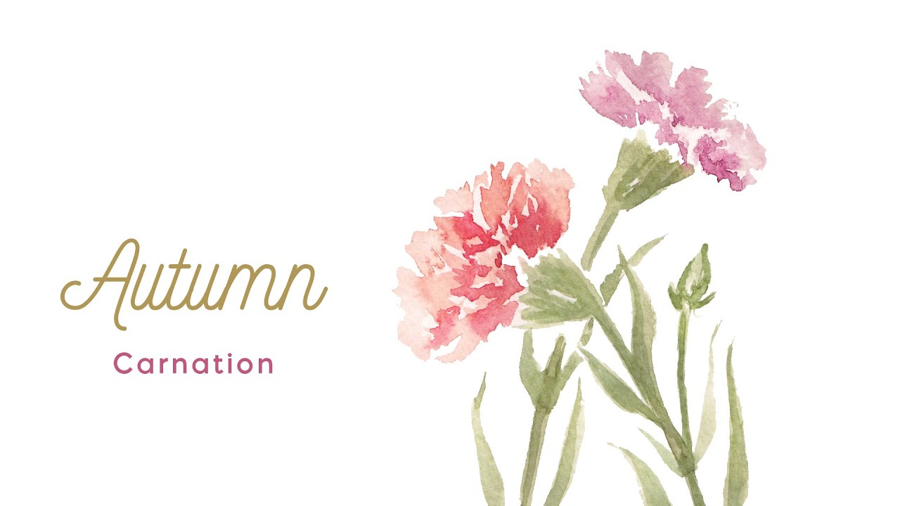 How to paint Carnation - Paint with Me - Autumn Watercolors