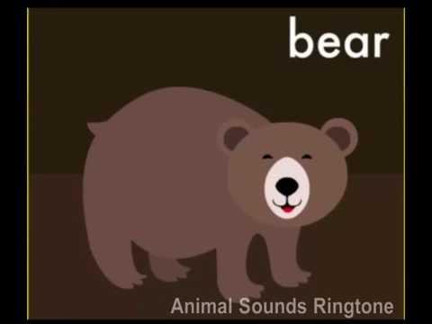 Animal Sounds Ringtone