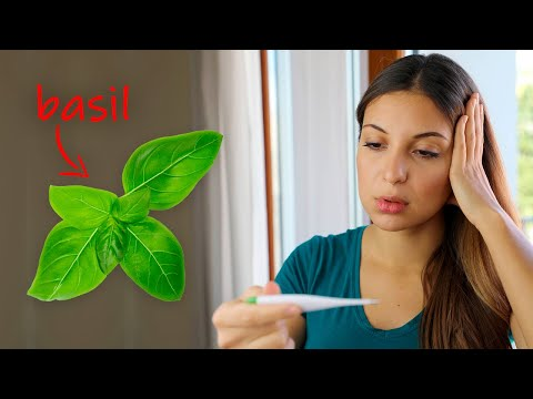How to Reduce a Fever Naturally Using Basil