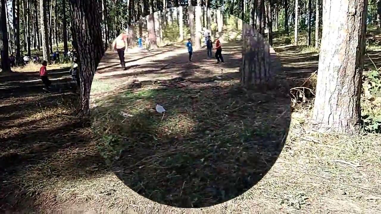 года прибавляют лес волжского замка тольятти фотосессии целью является