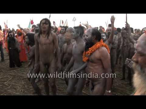 Naga babas covered with holy ash celebrate Kumbh Mela