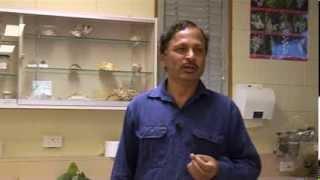 Herbarium Techniques Part 1 (intro)