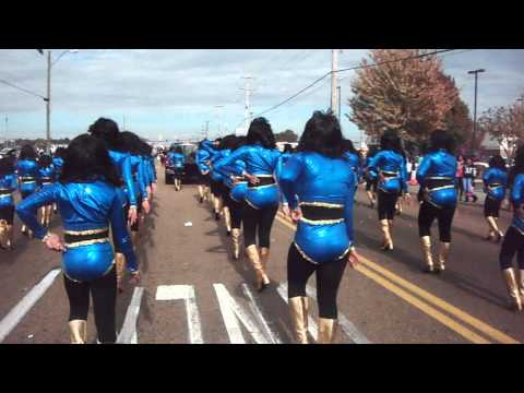 Golden Highsteppers Whitehaven Holiday Parade 2014 Memphis