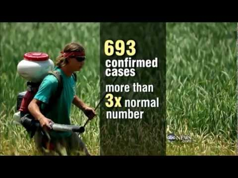 Fears rise as more West Nile Related Deaths Confirmed in Texas and California (Aug 22, 2012)