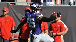 Anthony Barr's game-winning fumble recovery for a touchdown in OT! (Week 8, 2014)