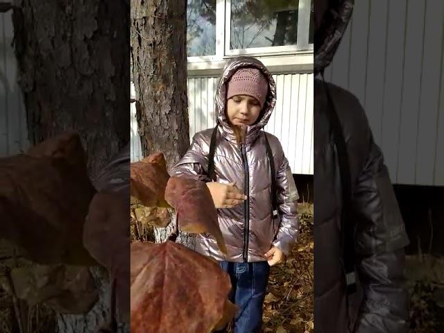 """Евангелина Нежинская читает произведение «""""Детство""""» (Бунин Иван Алексеевич)"""