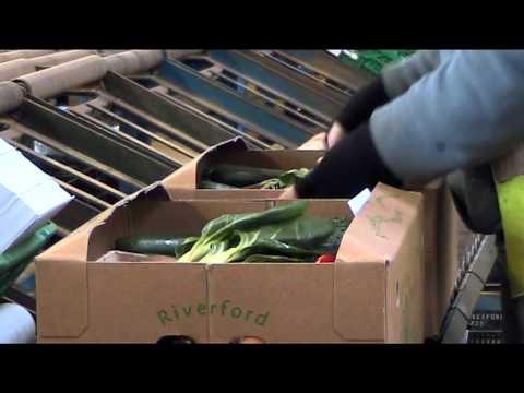 Organic market report 2013