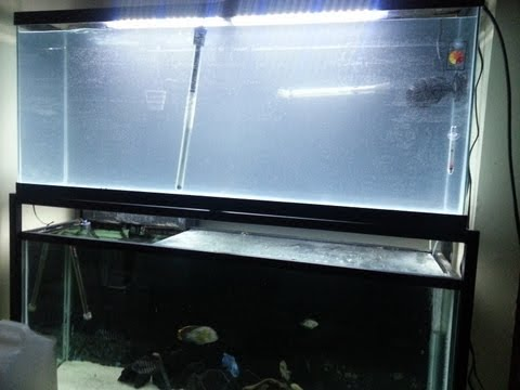 Freshwater To Saltwater Conversion Part 1