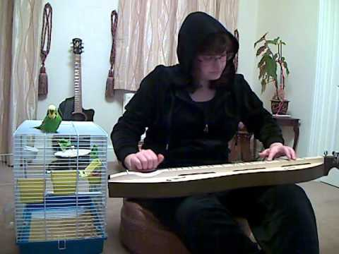 Mumford and Sons - Awake My Soul cover on Appalachian Dulcimer with budgie