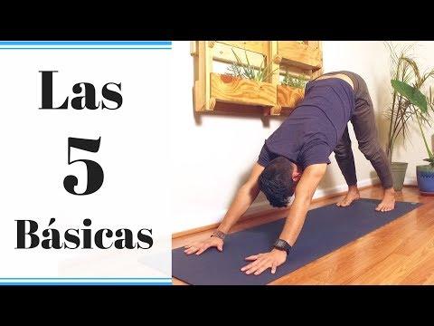 Posturas De Yoga Las 5 Basicas Youtube