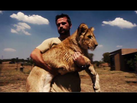 Lion Cub's Story | The Lion Whisperer
