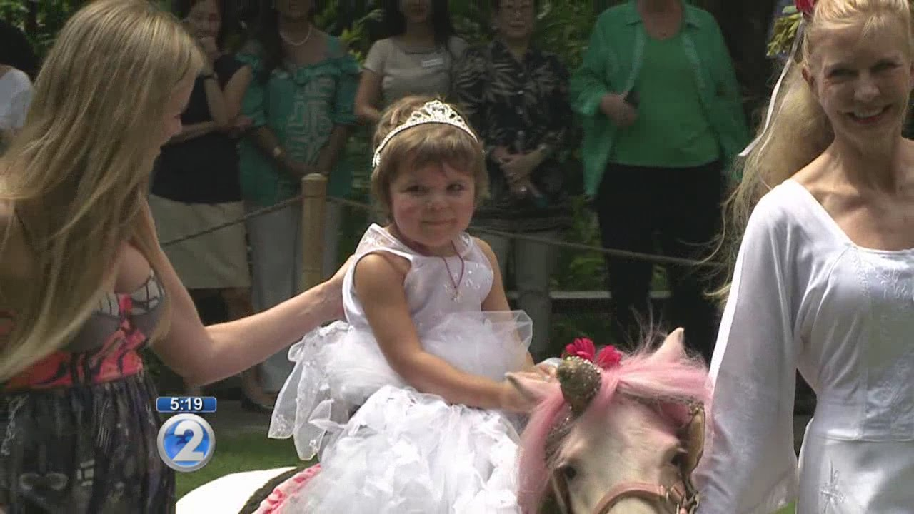 a8d8d76e3eac7 Make-A-Wish helps toddler battling leukemia find her dream unicorn ...