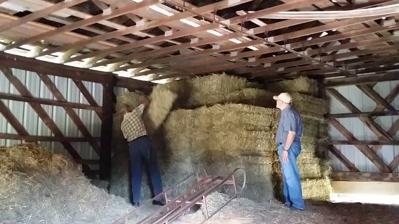 Stacking hay in barn - May 28, 2016 - YouTube