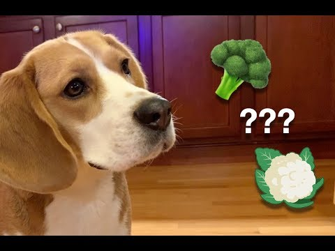 Does Oliver prefer broccoli or cauliflower?