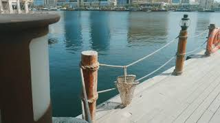 Must visit place -Al Seef | Old Dubai Meets New | #DubaiCreek  #Cinematic 7 days a week