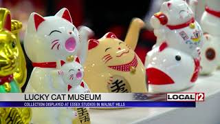 Collector expands Lucky Cat Museum in Walnut Hills
