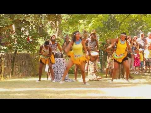 Passion @Work - IYASA - Zimbabwe