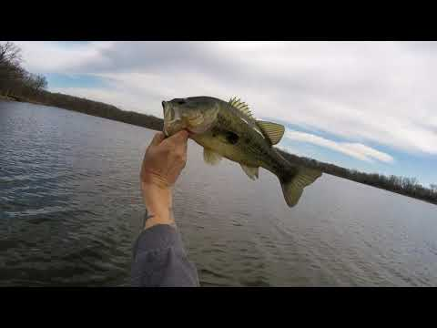Bass Fishing At BUSSE WOODS April 2019