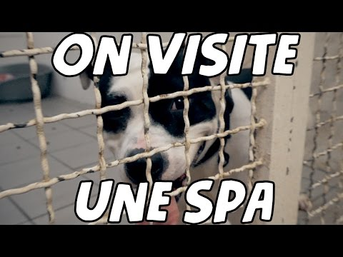 ON VISITE UNE SPA !