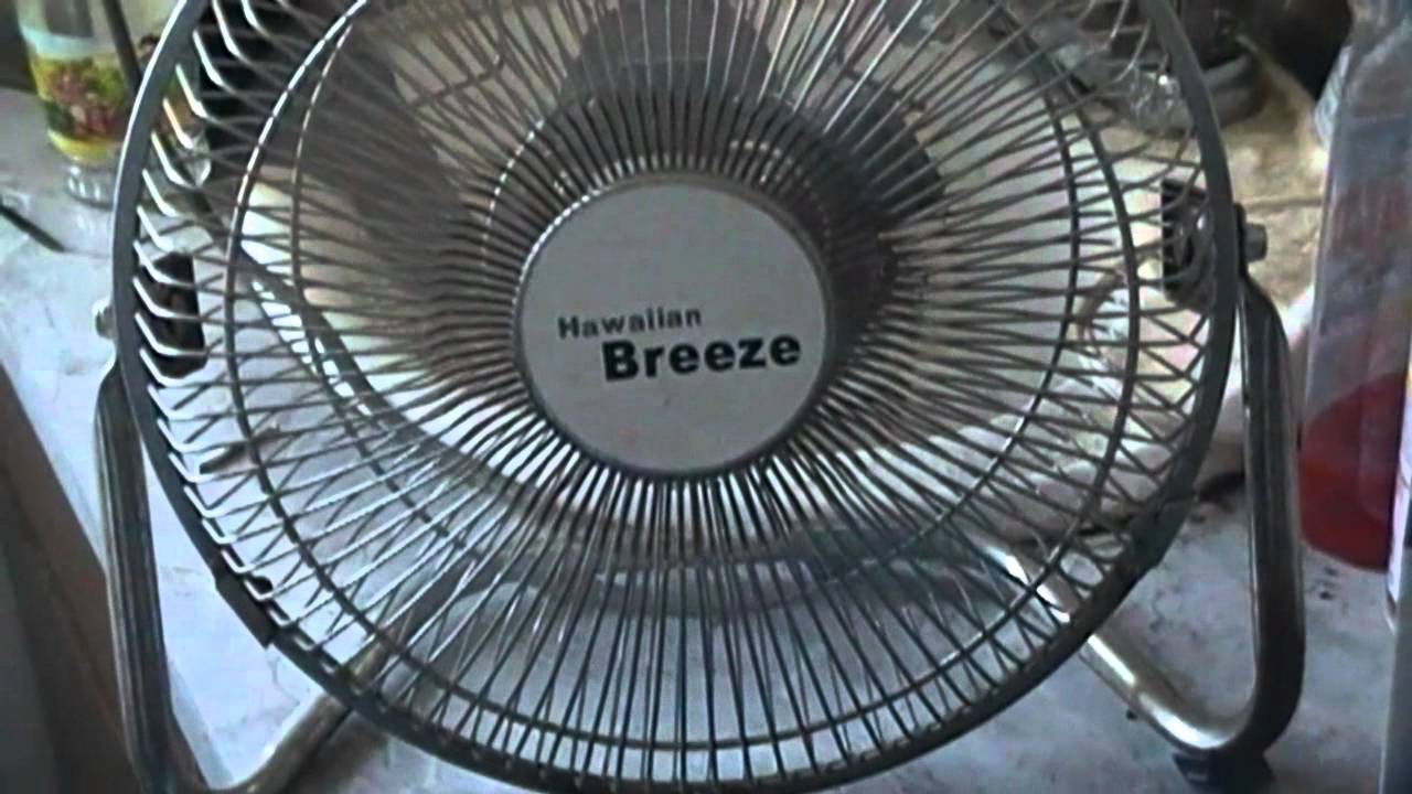 Captivating Hawaiian Breeze Fan Model CH V9   YouTube
