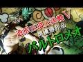 UFOキャッチャー~造形王頂上決戦Ⅴ vol.3 バルトロメオ 橋渡し~