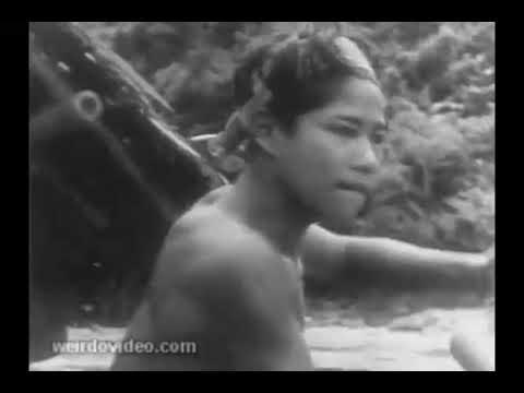 Download Newsreel: Malaya Floods - 1953