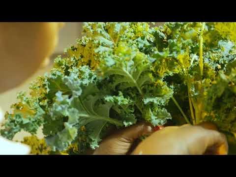 Food and Finance High School & fresh&co