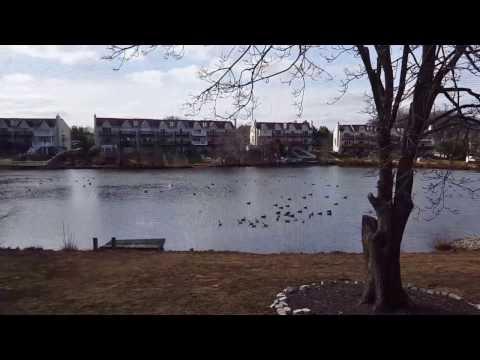5 Lake Drive, Bear Delaware