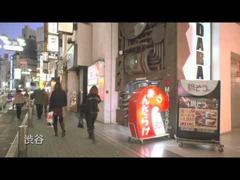 Japan: Fascinating Diversity (Kawaii!: Inside Japanese Pop Culture) (Japanese ver.)