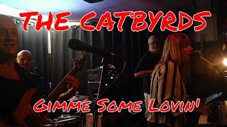 Gimme Some Lovin' The Catbyrds Live Cover Steve Winwood/Paula Eleni/Roland GR-55