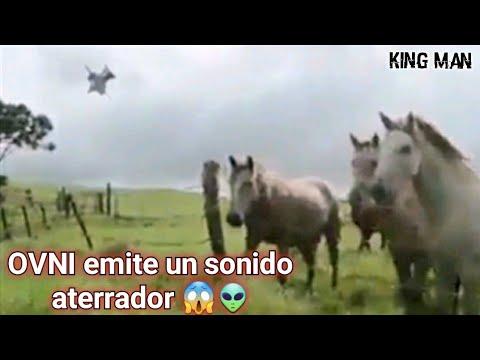 OVNI emite un aterrador sonido que asusta a caballos de una granja de EEUU ???