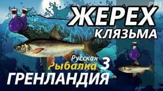 Жерех Клязьма /  РР3 [ Русская рыбалка 3.9 Гренландия].