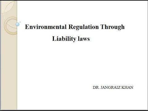 Environmental Regulations through Liability Laws
