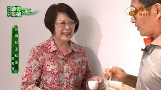 台灣紅玉紅茶(二)【甜園交響曲 2】| WXTV唯心電視台